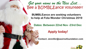 Volunteers needed at Fota Wonder Christmas